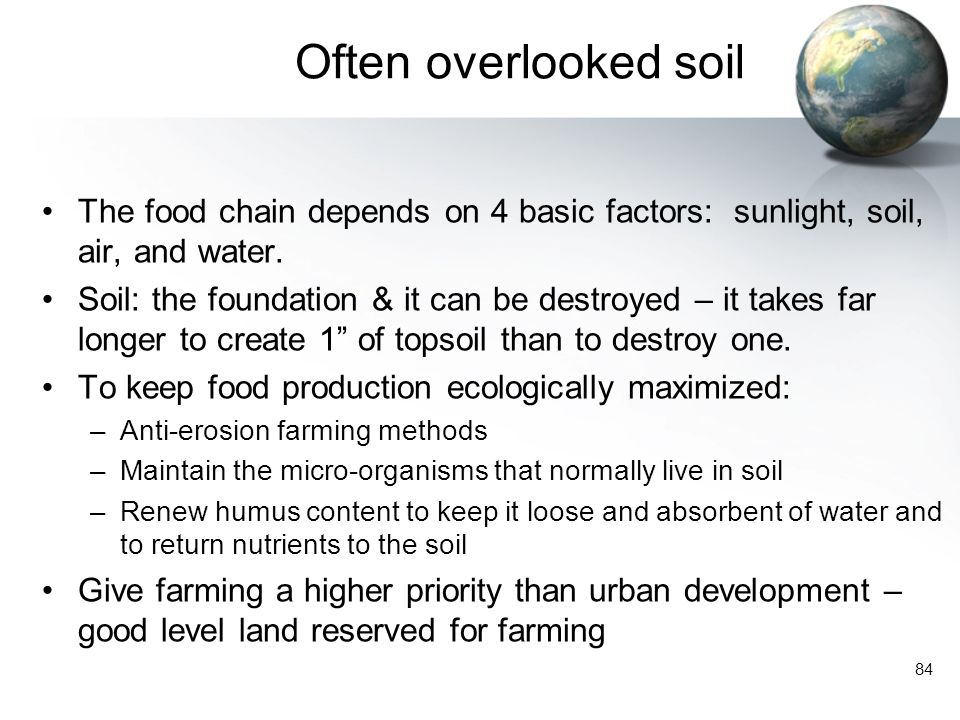 Often overlooked soil The food chain depends on 4 basic factors: sunlight, soil, air, and water.