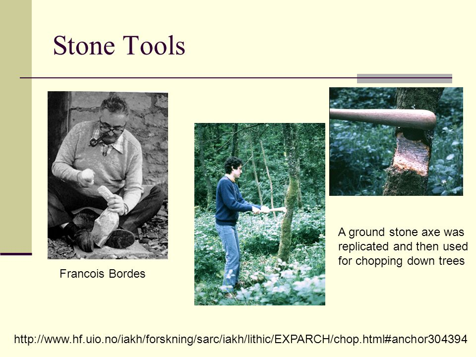 Stone Tools A ground stone axe was replicated and then used for chopping down trees. Francois Bordes.
