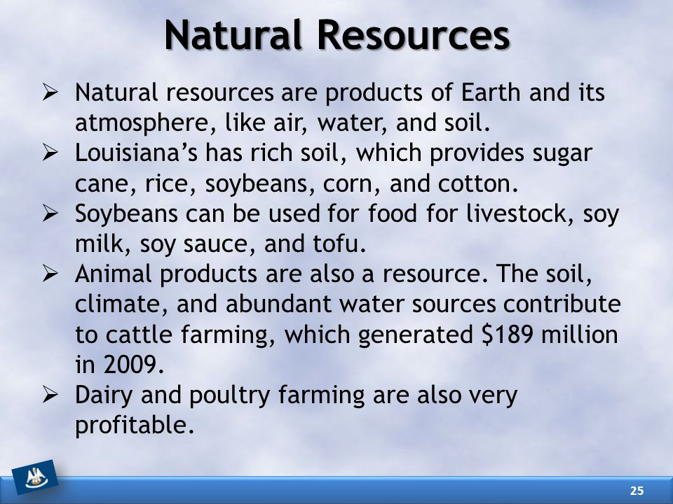 Louisiana our history our home chapter 3 louisiana s for Natural resources soil uses
