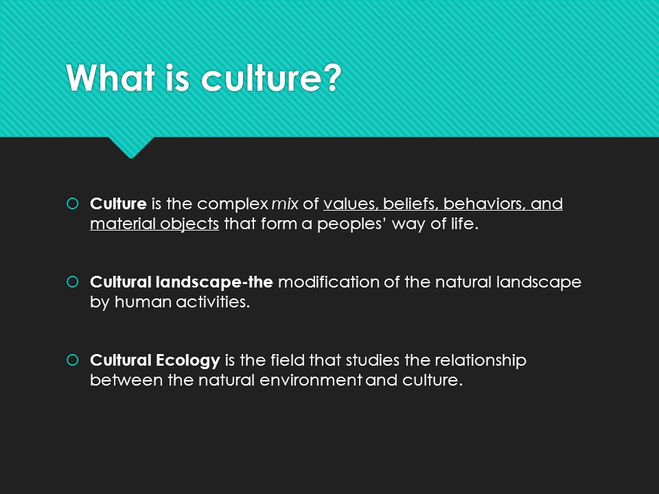 relationship of culture and human behavior