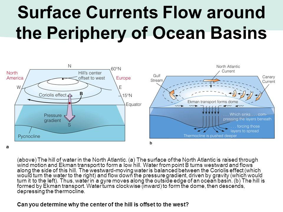 Surface Currents Flow around the Periphery of Ocean Basins