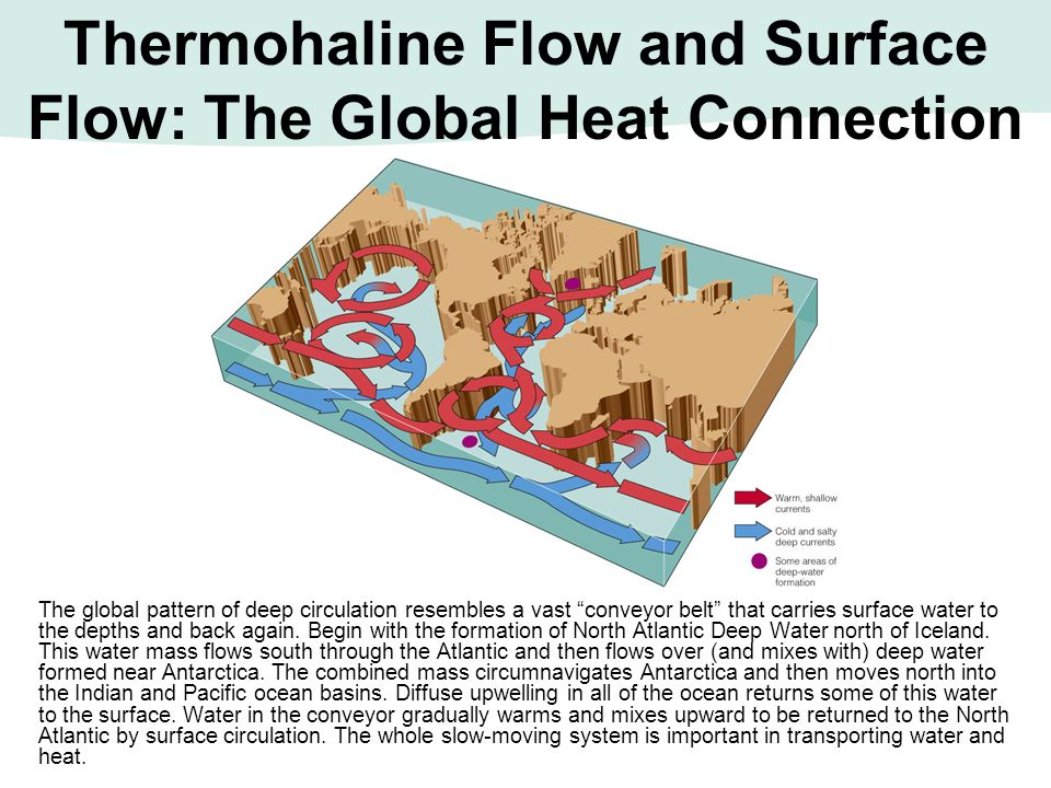 Thermohaline Flow and Surface Flow: The Global Heat Connection
