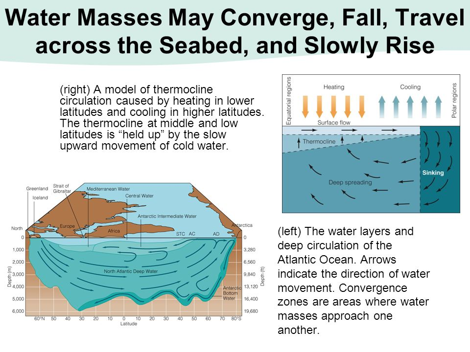 Water Masses May Converge, Fall, Travel across the Seabed, and Slowly Rise