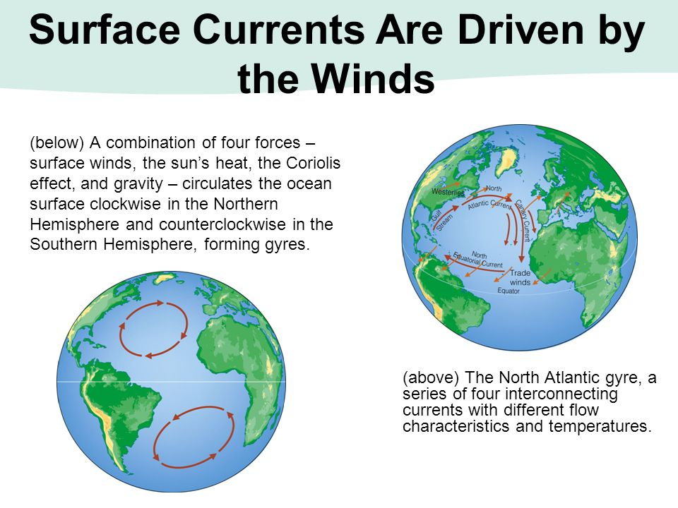 Surface Currents Are Driven by the Winds
