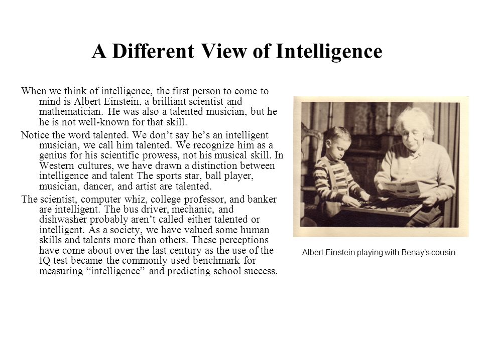 A Different View of Intelligence