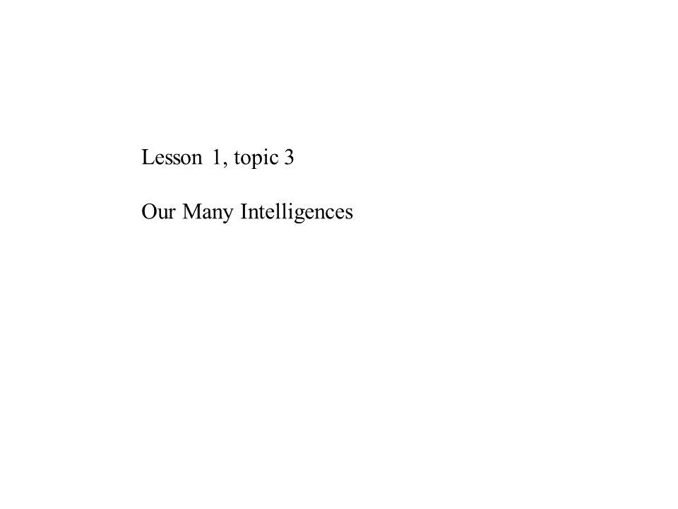 Our Many Intelligences