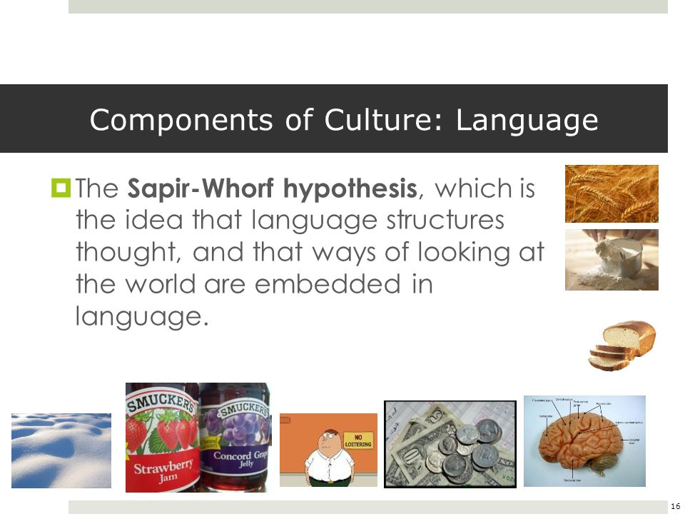 Why is language important in a culture - Answers.com