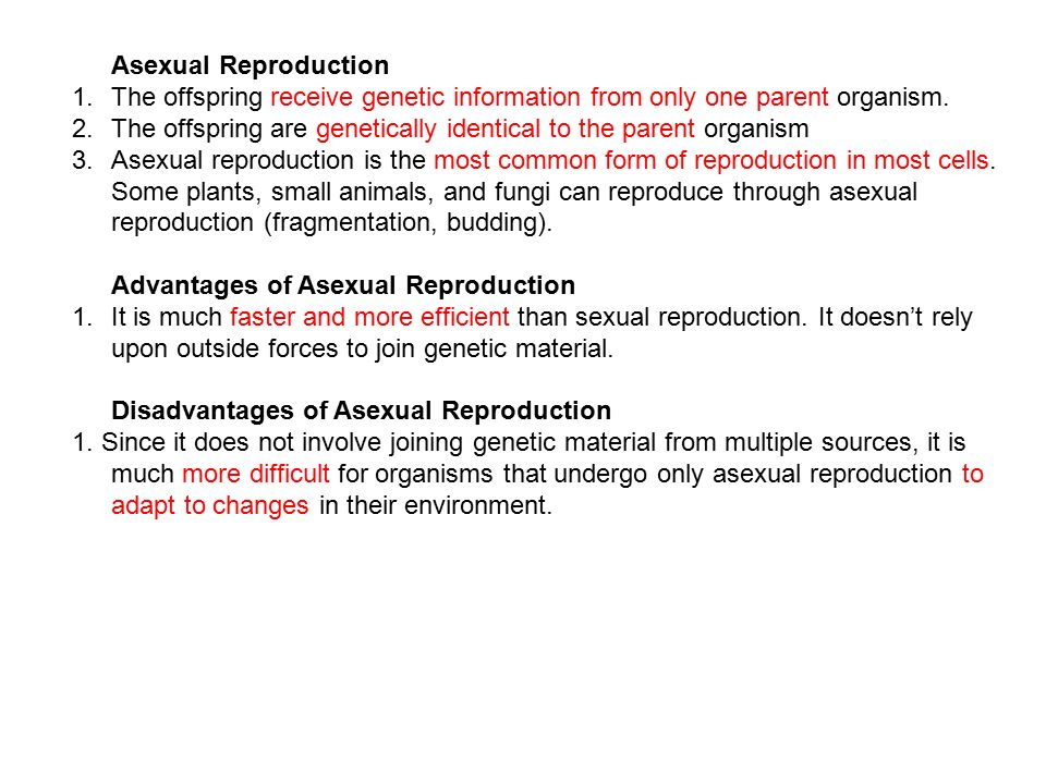 When is asexual reproduction advantageous images 264