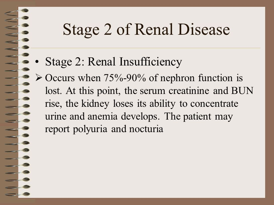 Renal Failure Melissa Greer Ylise Dobson Ppt Download