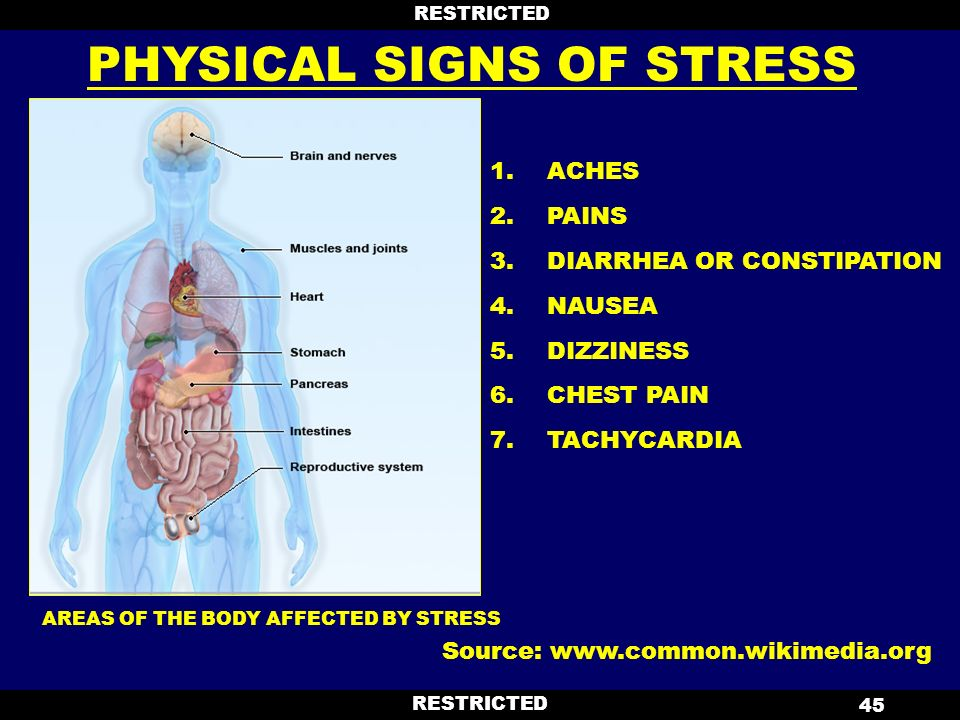 The main sources and symptoms of stress