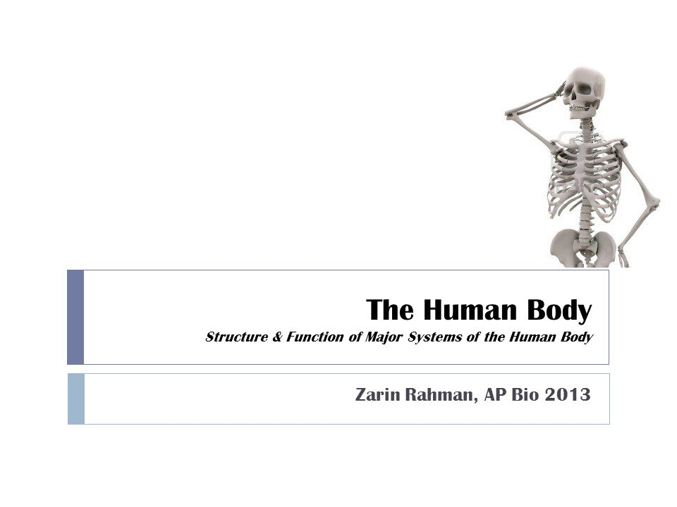 The Human Body Structure & Function of Major Systems of the Human Body