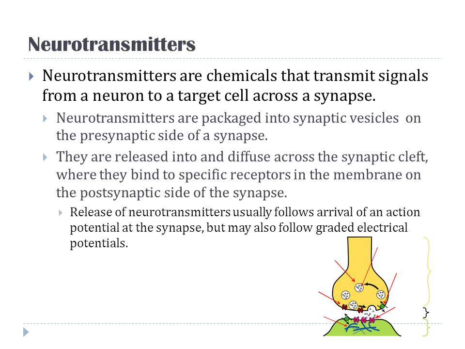 Neurotransmitters Neurotransmitters are chemicals that transmit signals from a neuron to a target cell across a synapse.