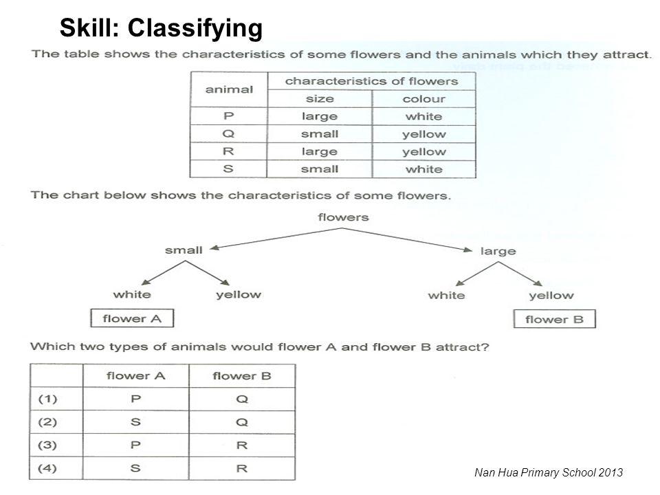 Skill: Classifying Nan Hua Primary School 2013