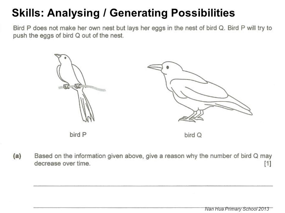 Skills: Analysing / Generating Possibilities