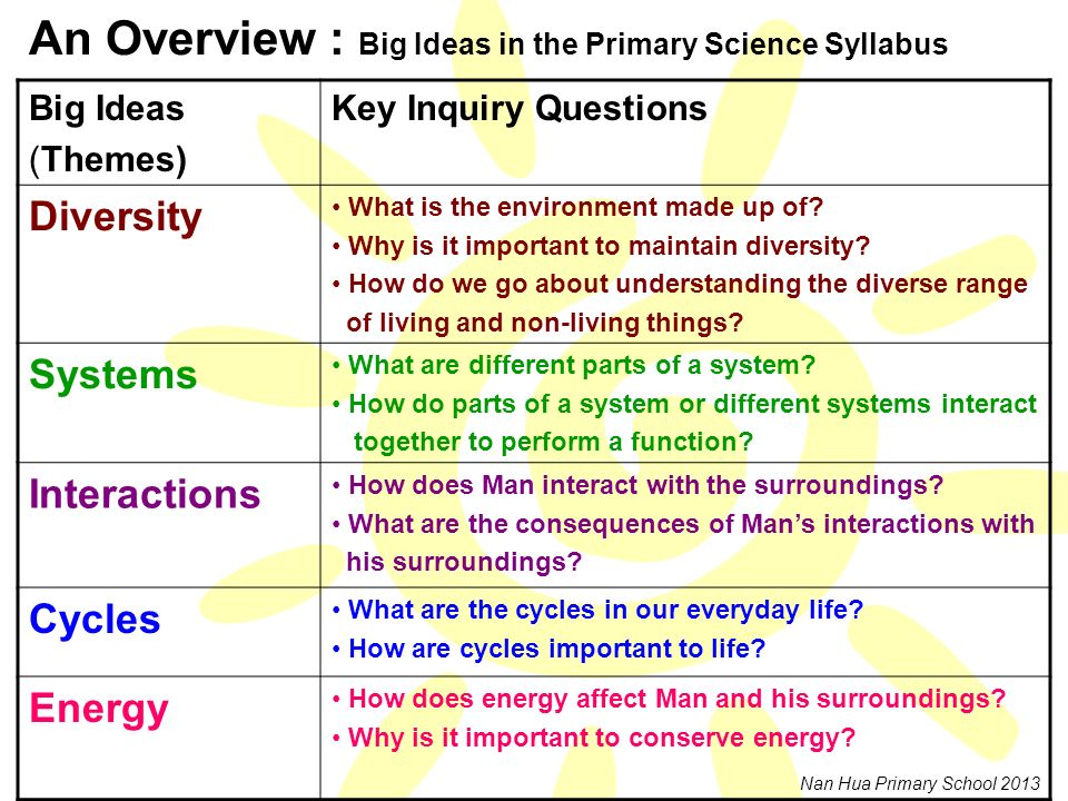 An Overview : Big Ideas in the Primary Science Syllabus