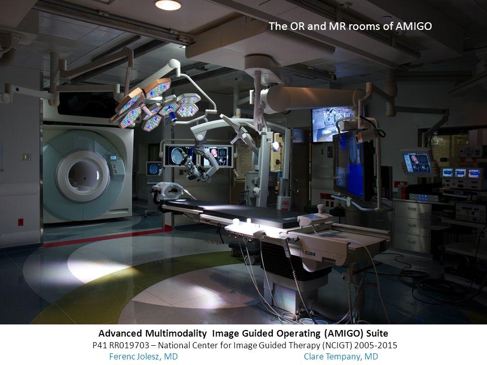 Advanced Multimodality Image Guided Operating (AMIGO) Suite
