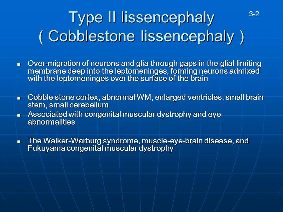 Cobblestone lissencephaly