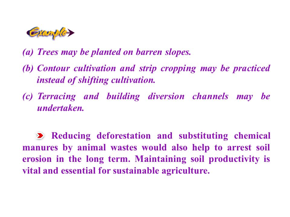 Trees may be planted on barren slopes.