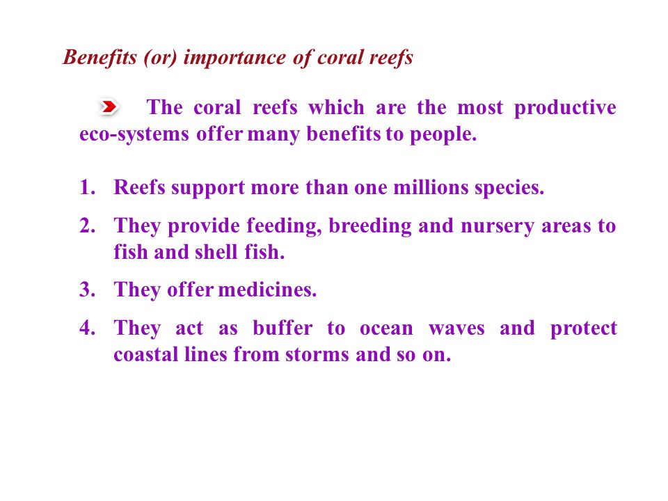 Benefits (or) importance of coral reefs