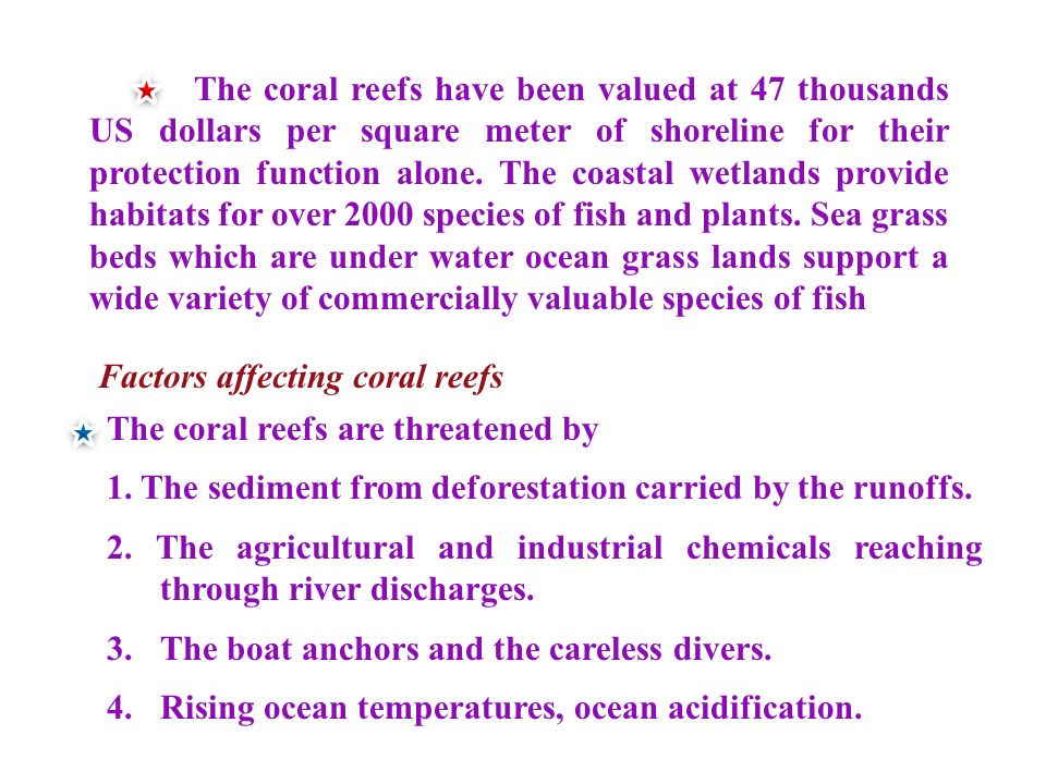 The coral reefs have been valued at 47 thousands US dollars per square meter of shoreline for their protection function alone. The coastal wetlands provide habitats for over 2000 species of fish and plants. Sea grass beds which are under water ocean grass lands support a wide variety of commercially valuable species of fish