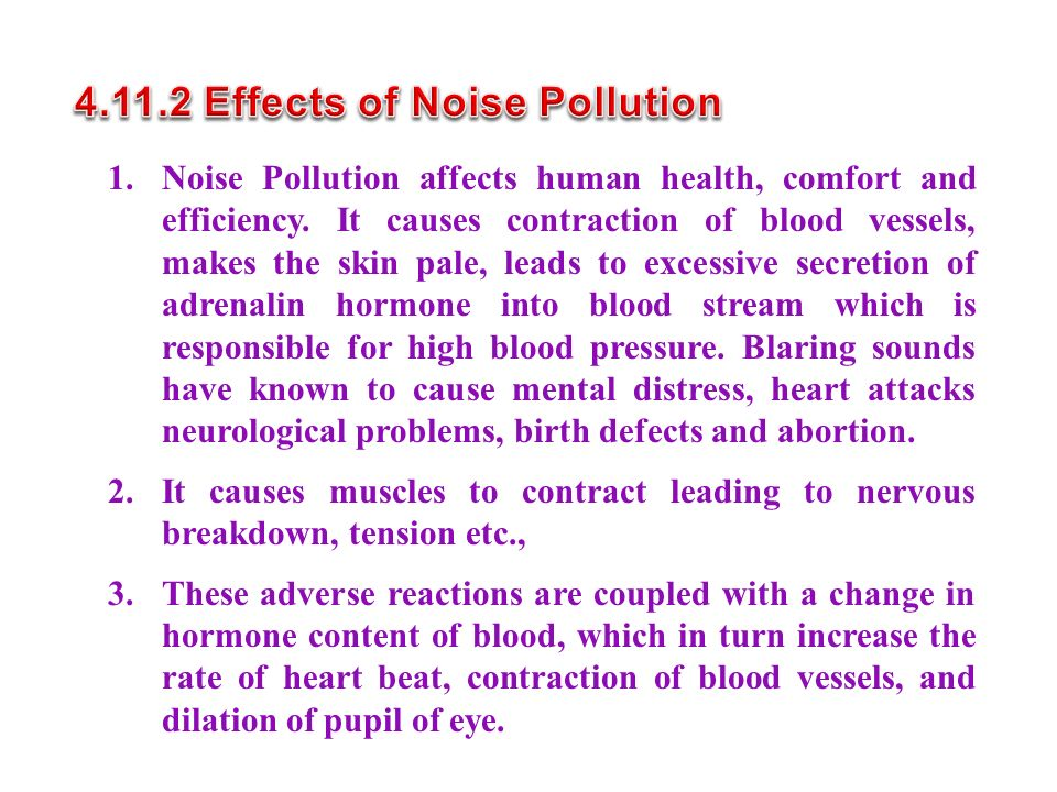 4.11.2 Effects of Noise Pollution
