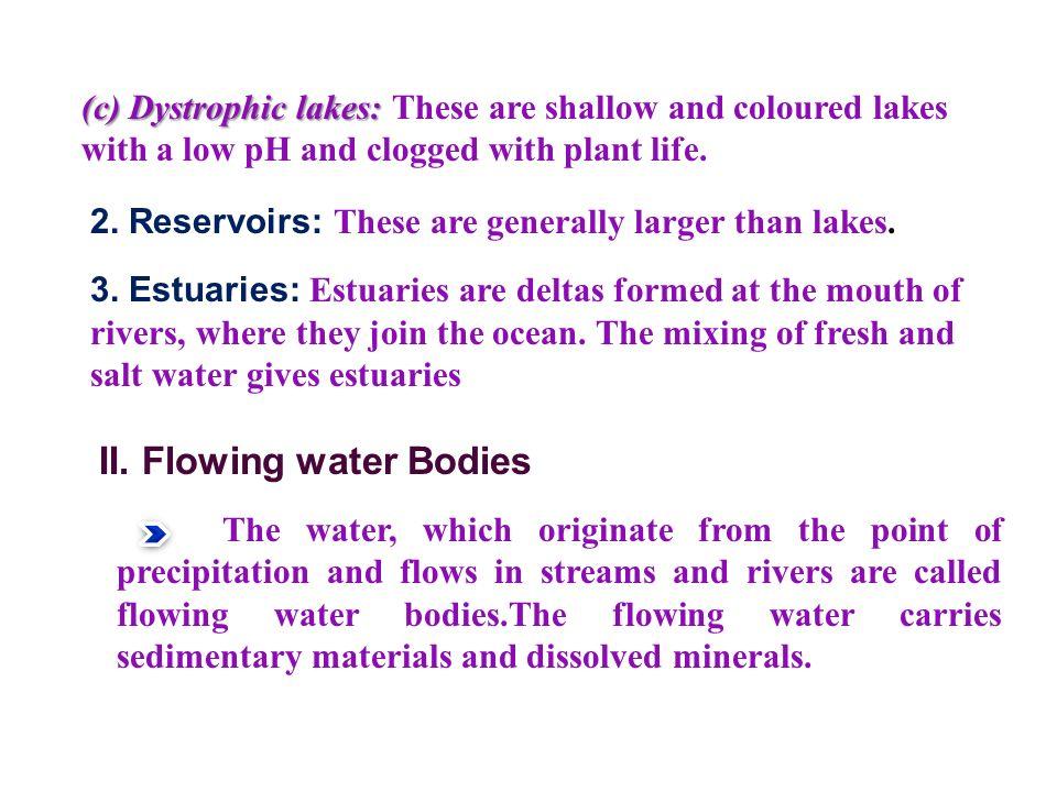 II. Flowing water Bodies