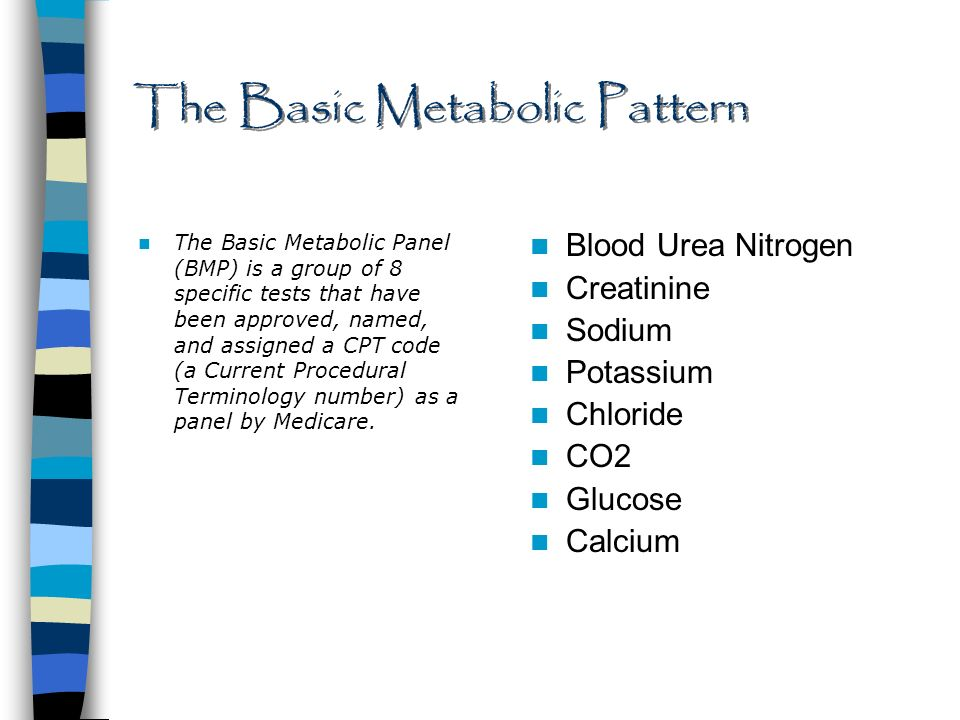 understanding the basic metabolic panel - ppt download, Skeleton
