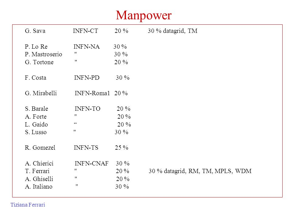 Manpower G. Sava INFN-CT 20 % 30 % datagrid, TM P. Lo Re INFN-NA 30 %