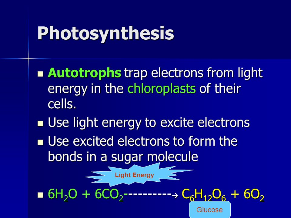 Electron energy and light answers 59 images unit 8 quiz bohr 39 electron energy and light answers energy in a cell part 1 photosynthesis and cellular electron energy and light answers fandeluxe Choice Image