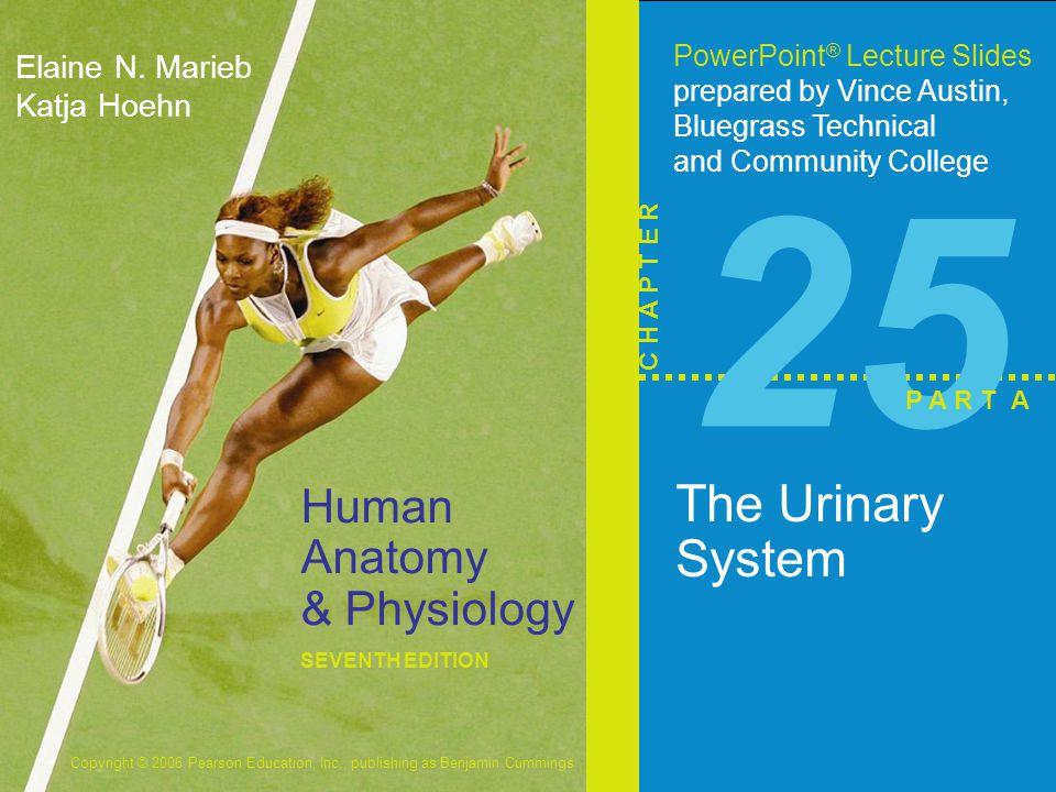 Vistoso Human Anatomy And Physiology Marieb 9th Edition Foto ...