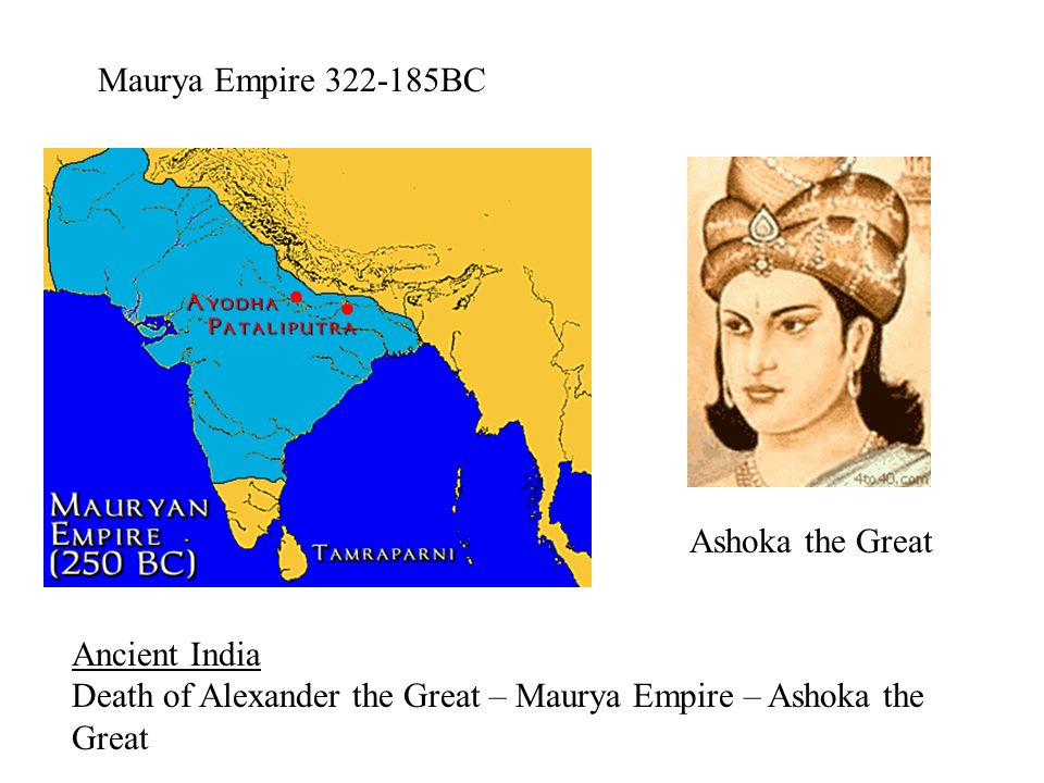 alexander the great vs ashoka O ashoka at your feet lies the mighty mauryan empire the largest nation of its age after its foundation in 322 bc, the empire rapidly expanded crushing the satraps of alexander's empire the fledging nation continued to grow, eventually encompassing nearly the entirety of the indian subcontinent.