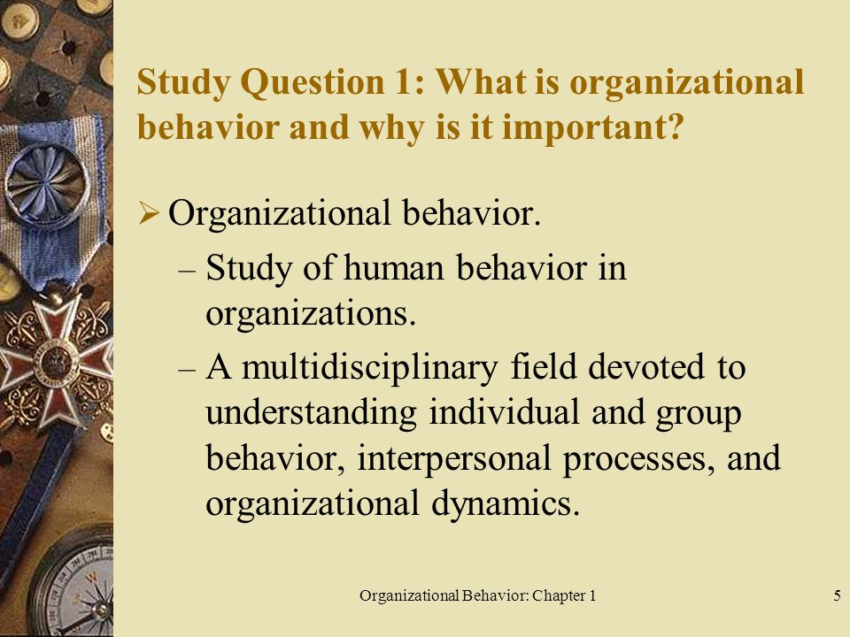 What is Organizational Behavior? Definition and History of ...