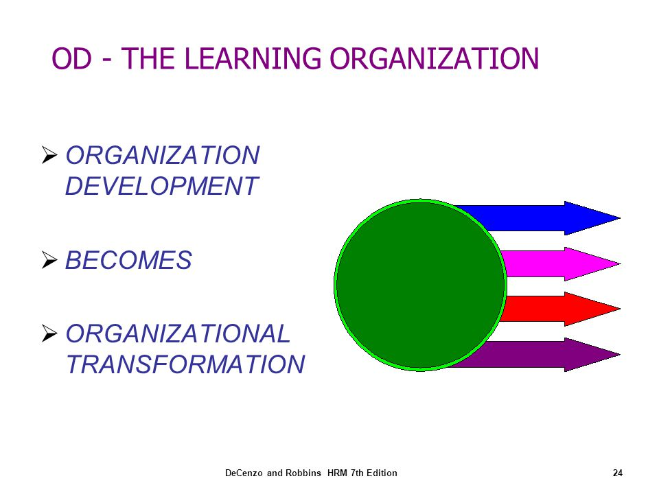 Developing a learning organisation hrm