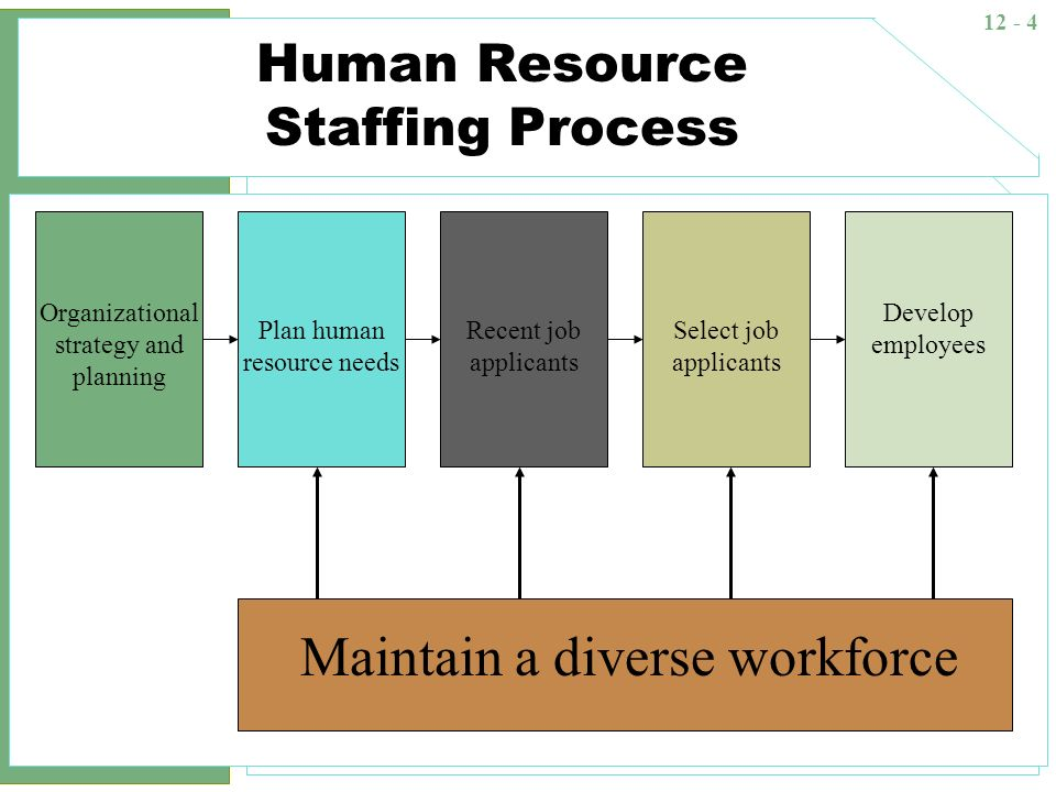 business hr and staffing strategy shaping Hr strategy consulting 3 define human capital value the first step towards an effective hr strategy is to define value and to understand how business value is created.