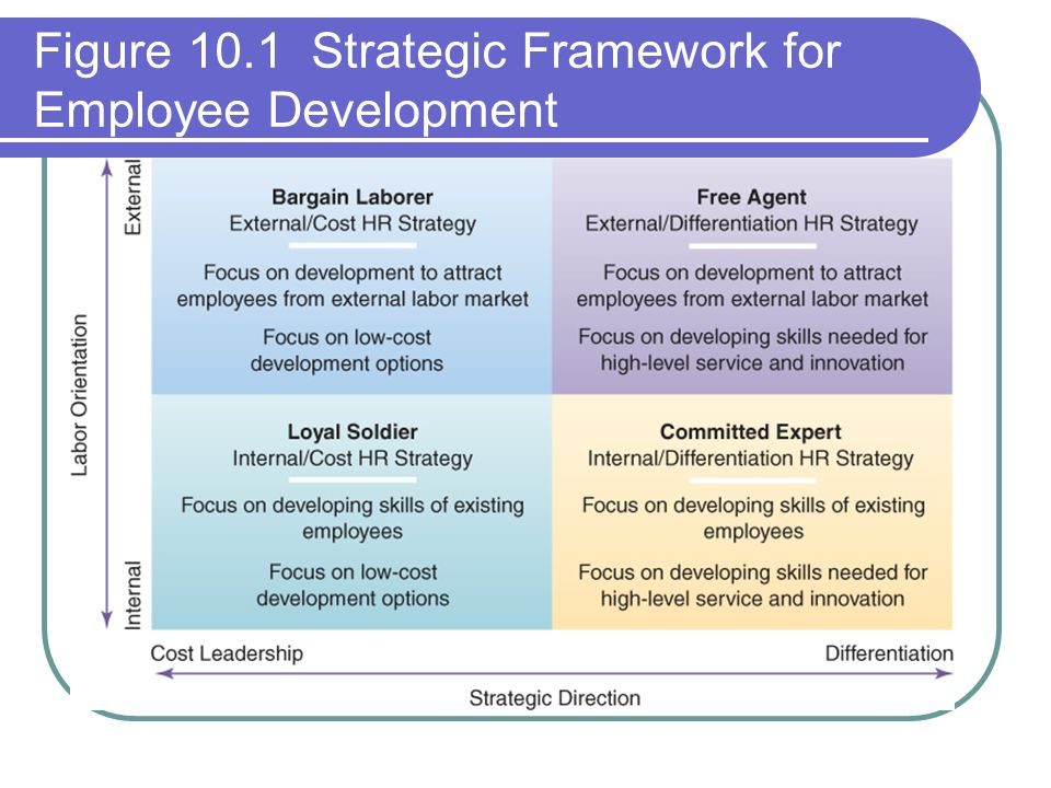 the theory of employee development focusing Introduction training and development is the study of how structured experiences help employees gain work-related knowledge, skill, and attitudes.