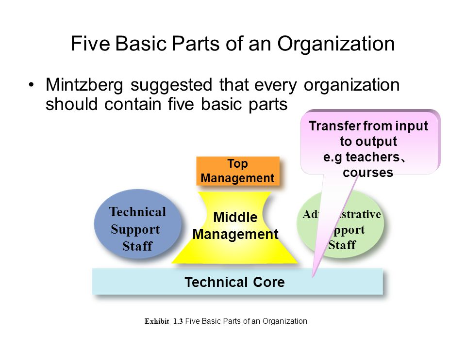 five basic components of an organisation Five approaches to organizational design the five structures are basic organizational structures, which are then adapted to an organization's needs.