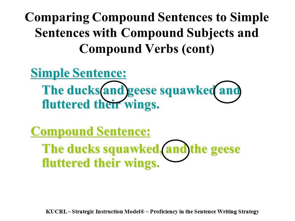 write a interrogative sentence with a compound verb