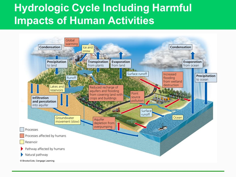 how humans activities are altering biogeochemistry and cycling in the water cycles essay Research within the microbial biogeochemistry group at whoi impacts of human activities on cycles life and the biogeochemical cycling of.