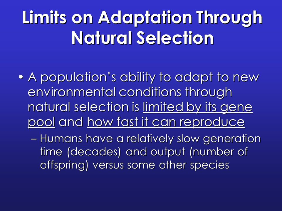 natural selection and adaptation relationship quizzes