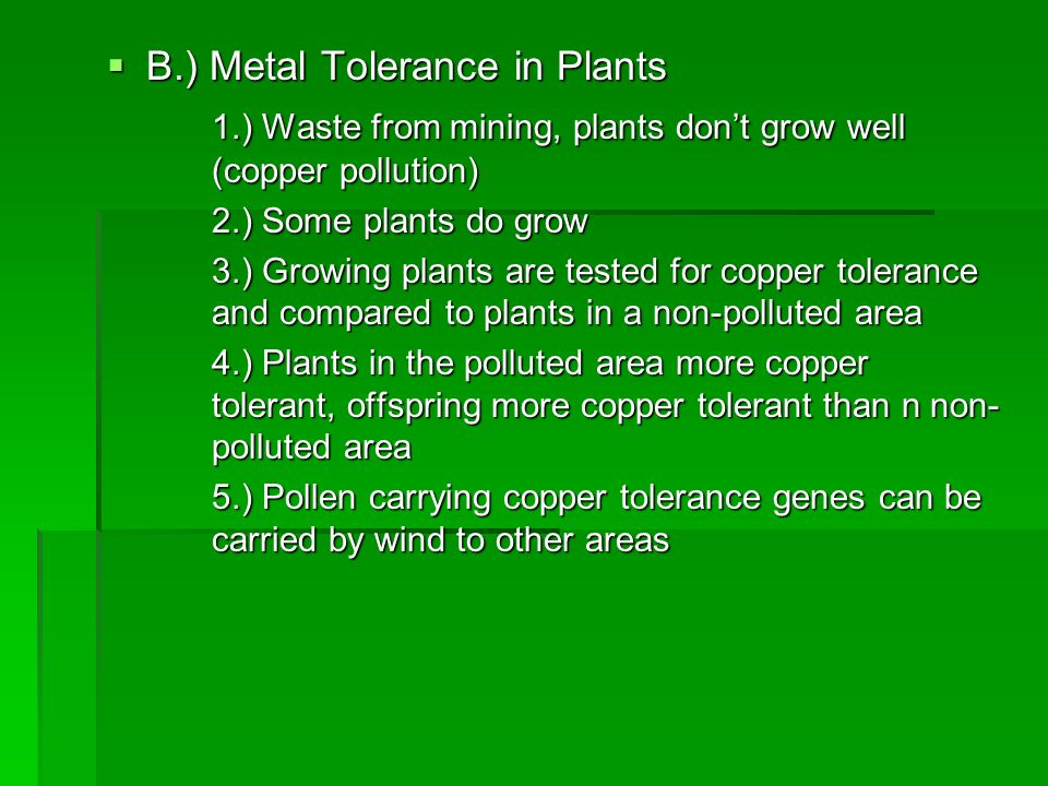 B.) Metal Tolerance in Plants