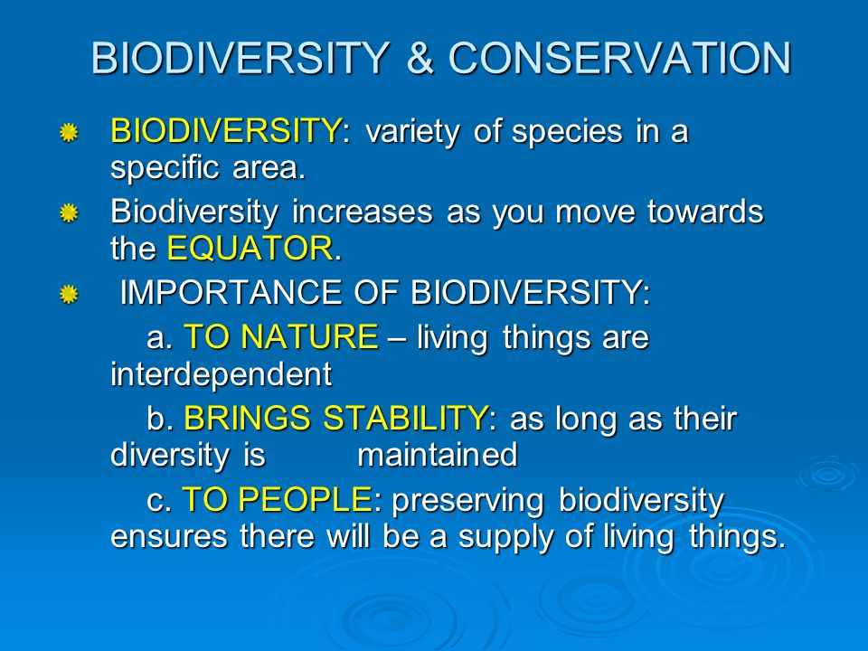 essays on biodiversity