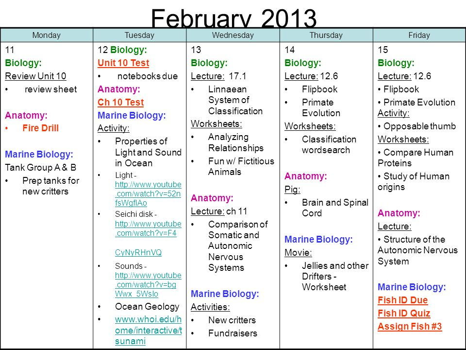 February Biology: Review Unit 10 review sheet Anatomy: