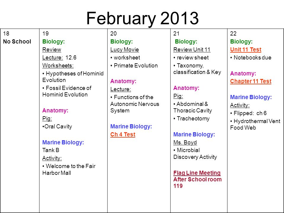 February No School 19 Biology: Review Lecture: 12.6
