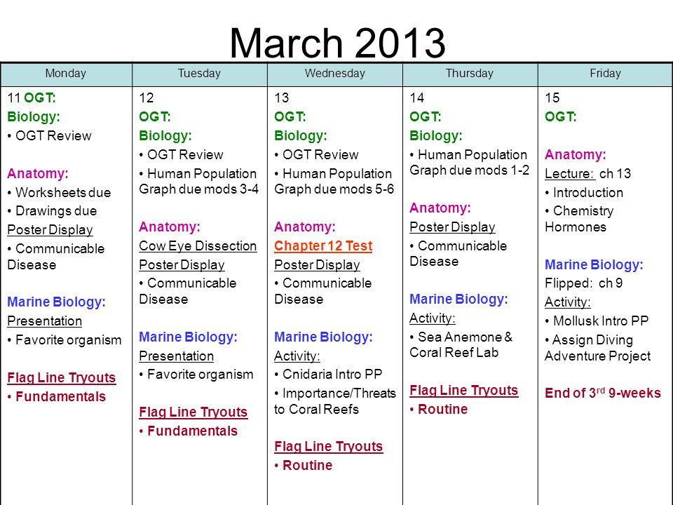 March OGT: Biology: OGT Review Anatomy: Worksheets due