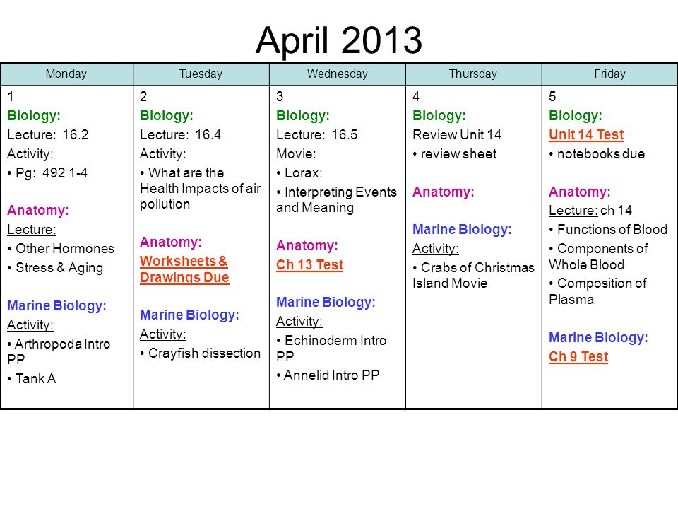April Biology: Lecture: 16.2 Activity: Pg: Anatomy: