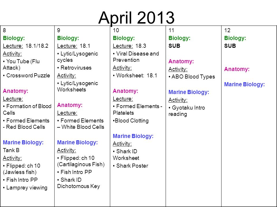 April Biology: Lecture: 18.1/18.2 Activity: