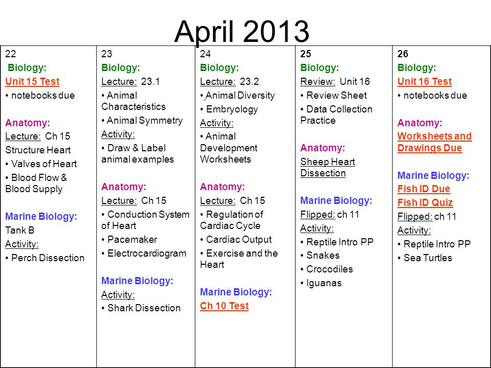 April Biology: Unit 15 Test notebooks due Anatomy: