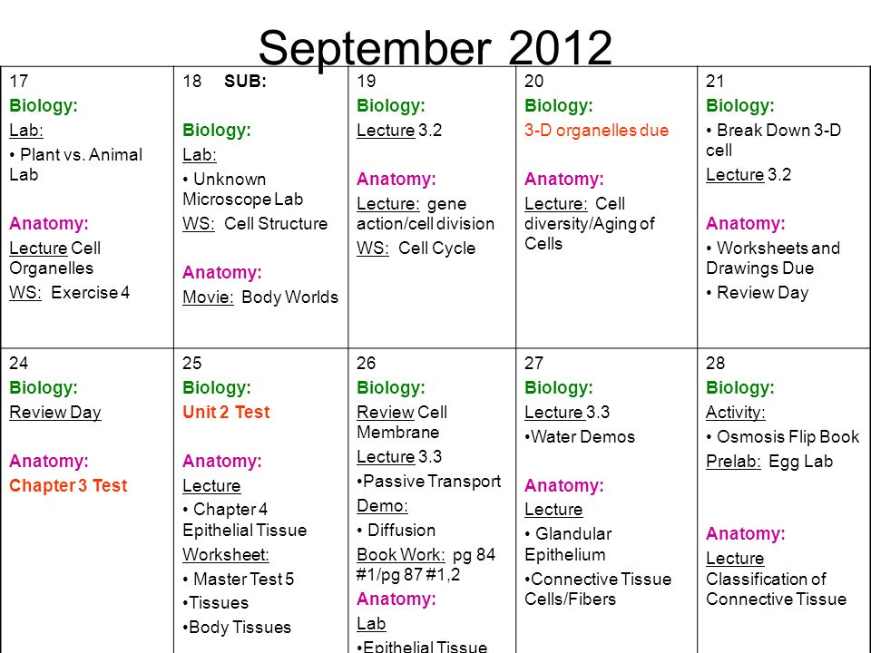 September Biology: Lab: Plant vs. Animal Lab Anatomy: