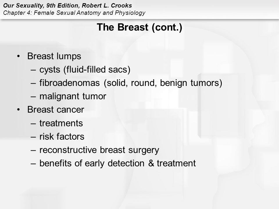 Lujo Anatomy And Physiology Of Breast Cancer Bosquejo - Imágenes de ...