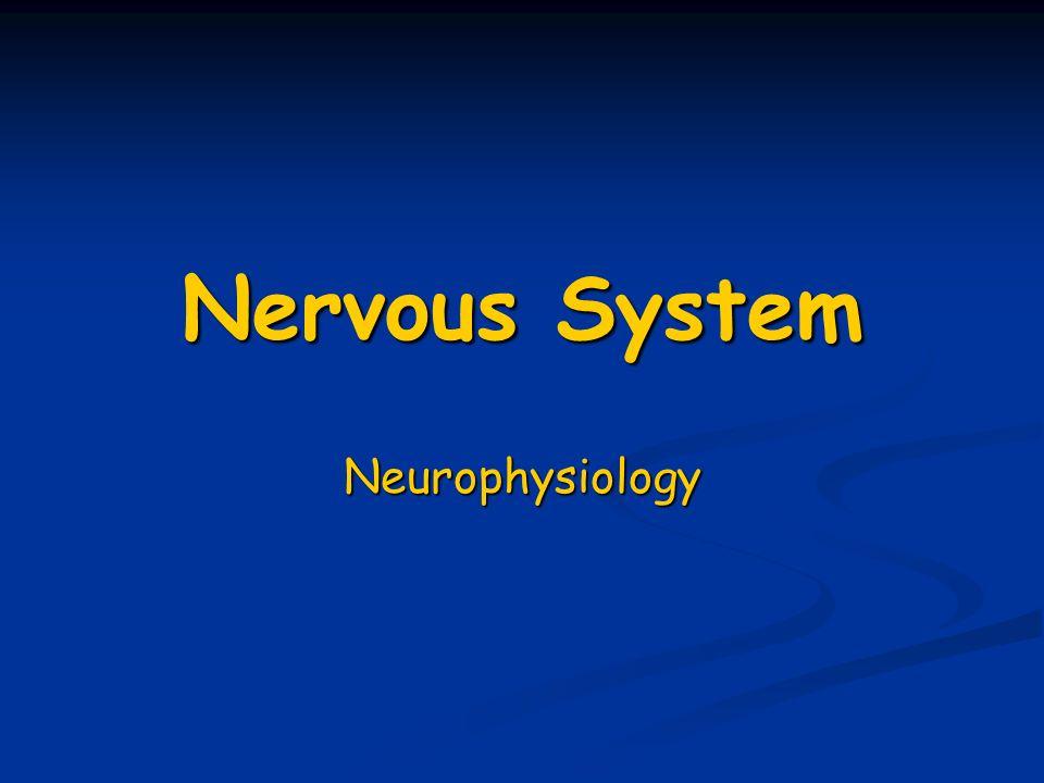 neurophysiology of never impulses
